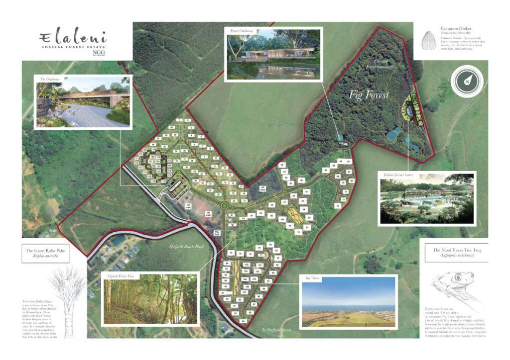 elaleni-map-website (1)
